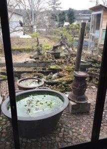たけぞう茶屋のお庭