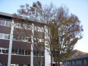 滋慶学園高等学校の校舎
