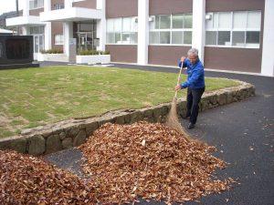 滋慶学園高等学校の落ち葉掃除