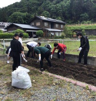 苗を植えるための畝を作り